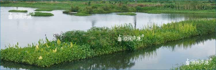 漂浮湿地在湖泊中应用蓝图设计