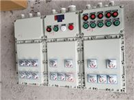 BXK訂制水泵啟停防爆控制箱