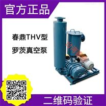 THV-150罗茨真空泵