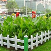 绿色环保PVC园艺草坪花坛护栏
