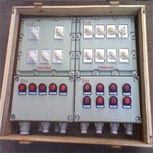 5回路带总开隔爆型防爆照明配电箱