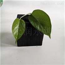 江苏不耐水型蜂窝活性炭批发价格