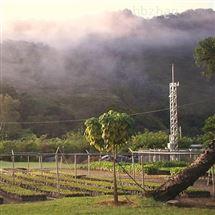 BWWS-100湿地气象站