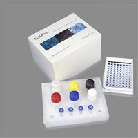 大鼠5a逆转录酶(5aRT2)ELISA检测试剂盒