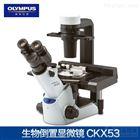CKX53奧林巴斯倒置生物顯微鏡價格