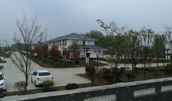 江苏省滨海县八滩镇聚焦特色发力农村人居环境整治