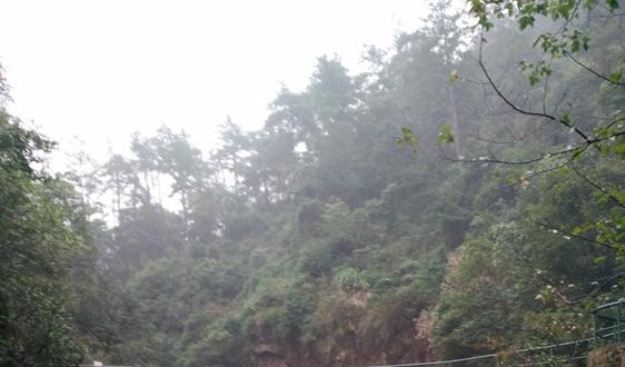 江苏泰州环境监测中心雷竞技官网app采购项目公开招标