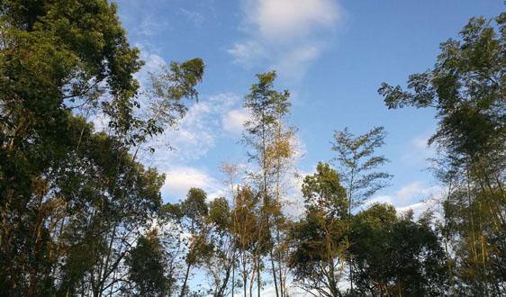 吉林省積極推動生態文明示範創建助力打贏汙染防治攻堅戰