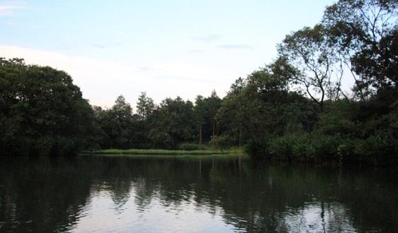 四川:徹底夯實治水責任 持續推進沱江流域汙染治理