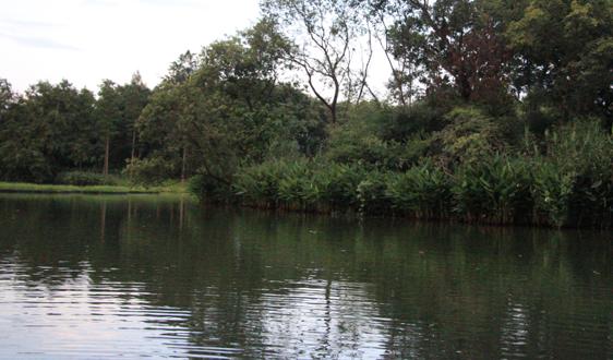 四川:《資陽城區汙水處理收費標準調整方案(征求意見稿)》