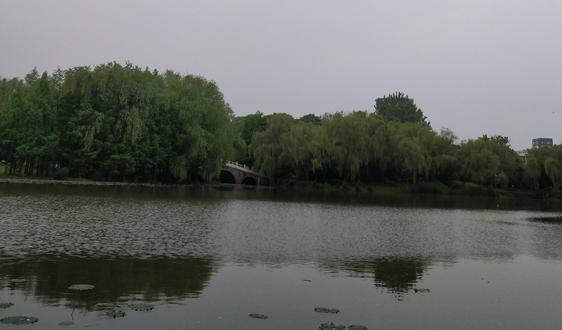 请注意:新目标出炉 3月底湖南农村生活污水得这样处理