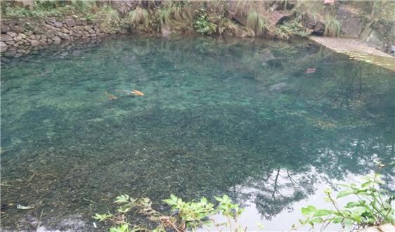 王凯军:新型冠状病毒污染医疗污水应急处理技术方案解读