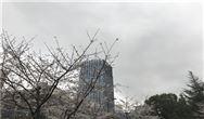 生态环境部:环境空气中颗粒物(PM10和 PM2.5)β射线法自动监测技术指南