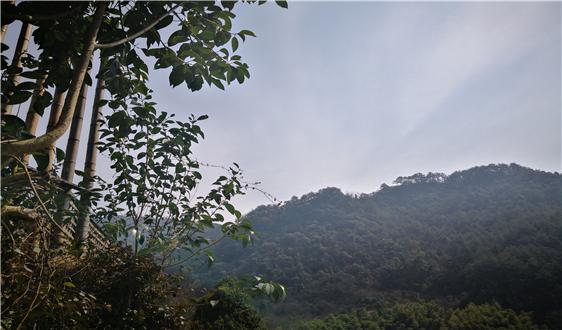 生态环境部通报重点区域2020年1月和2019年10月—2020年1月环境空气质量有关情况