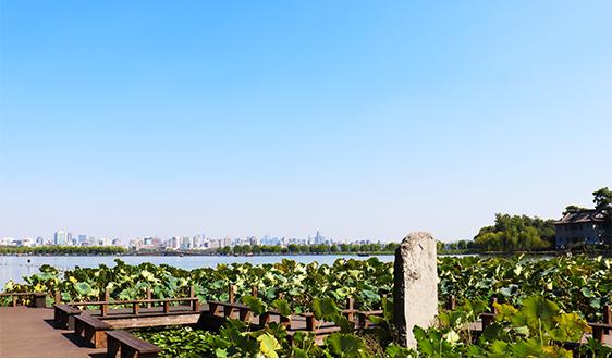 在浙江,农村生活污水户用雷竞技官网app即将迎新标尺