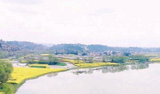 """湖北洪湖市""""生态经""""——垃圾分好类,污水管到位"""
