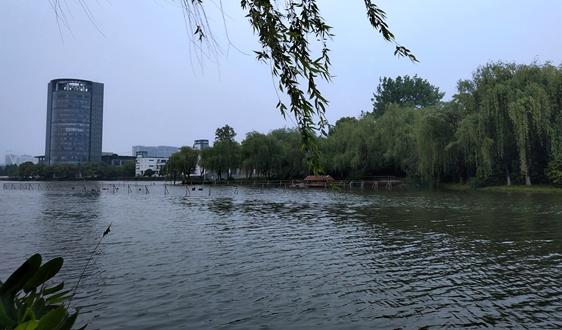 长江生态雷竞技官网手机版下载集团联合体拿下4.8亿江西万安水环境治理项目