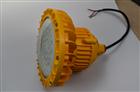 30w防爆LED灯 吊杆装防爆泛光灯