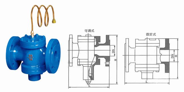 自力式压差控制阀外形结构图.jpg