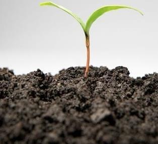 营养土检测