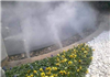 金花茶公园水池人造雾工程